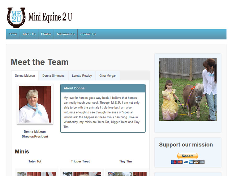mini equine website design