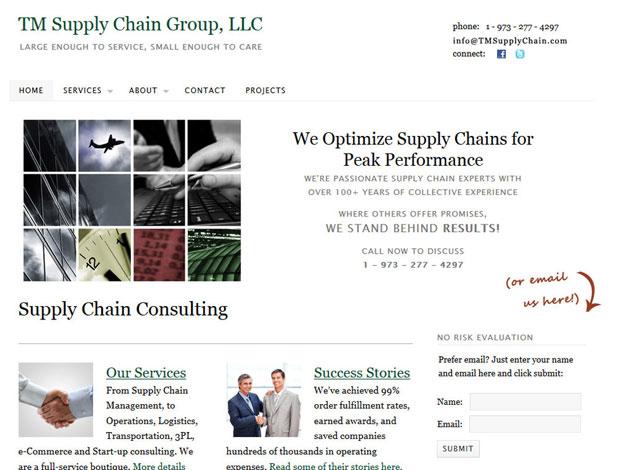 Logistics Consulting Website